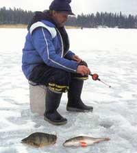 какая рыба клюет в начале июня